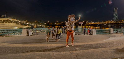 The Poemcatcher catches the Super Moon, World Domination Summit 2014