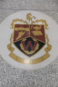 WHS Class of 96 Reunion-8681