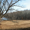 Long Pond Preserve view from Mead St, 11/30/2013