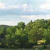 Pinecroft panorama in summer, June 2008