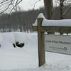 Long Pond Preserve on Mead Street