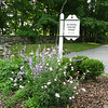 the Lewisboro Garden Club helps keep this island at the intersection of Schoolhouse Rd and Mead Street pretty year-round