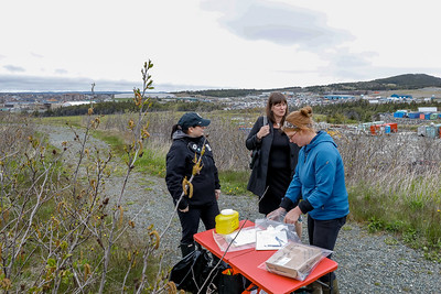 WWF World Wildlife Fund Lundrigan's Marsh Lookout Cleanup Lundrigan's Marsh, 335 East White Hills Road