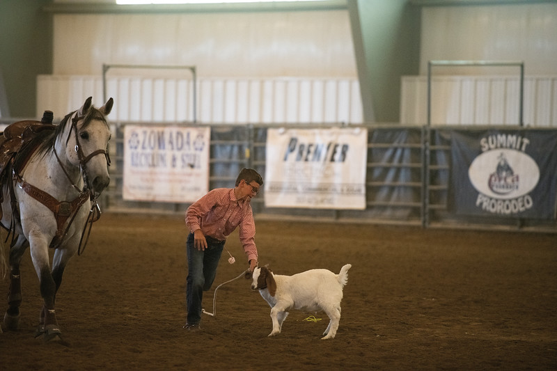 Matthew Gaston | The Sheridan Press<br>Ellis Webber prepares to flip and tye a goat during the junior boys goat tying event at the WYJRA Rodeo Saturday, June 22, 2019.