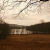 Long Pond Preserve and Lake Waccabuc, 2008