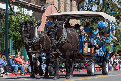 Wagon Days Parade 2015