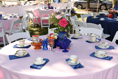 Wagshal's Tea Party 2017