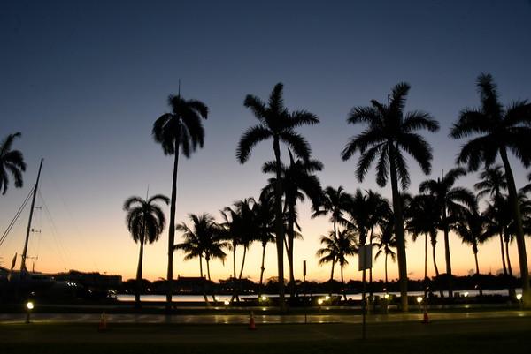 Palm Beach Walk MS