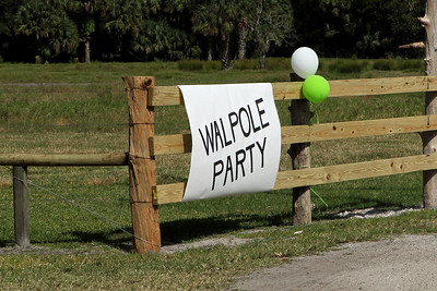 G2 Walpole 80 (1)