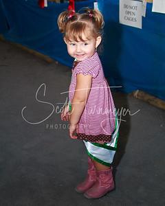 Warren County Fair 4H 2010