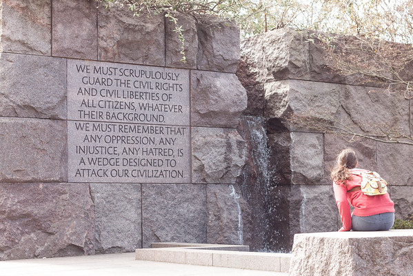 Roosevelt Memorial - Guard Civil Rights