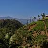 @ the resort