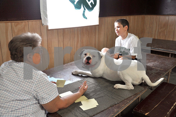 -Messenger photo by Joe Sutter<br /> <br /> Care and Grooming Judge Ginny Settel questions Levi Egli about his dog Oscar at the Webster County Fair dog show Wednesday morning.