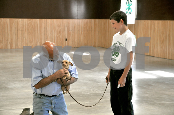 -Messenger photo by Joe Sutter<br /> <br /> Dog show judge Larry Jackson helps Casey, a Daschund-Chihuahua mix, feel more comfortable in the ring. Dillon Sytsma, 11, was competing for the first time in the obedience portion of the Webster County dog show in the pre-novice 'A' class.