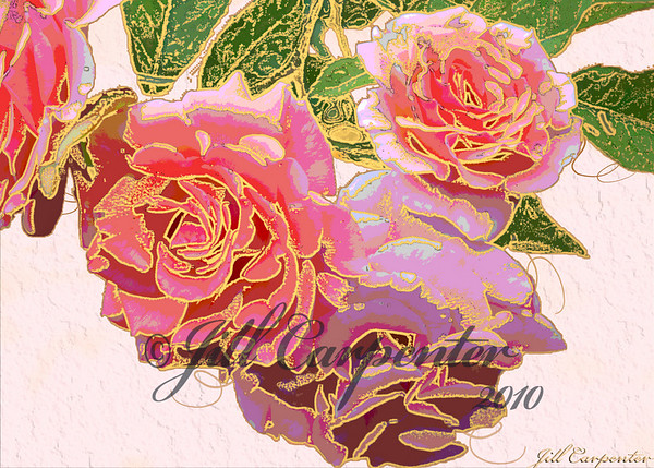 ©jcarpenterclicks - 073109 - Flowers - 5 X 7  Bay Roes - DSC_7170 Tester #4