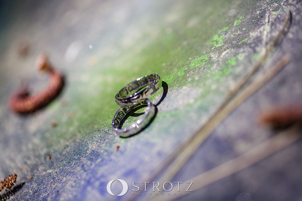 03_The Rings_0072
