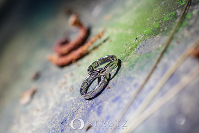 03_The Rings_0074