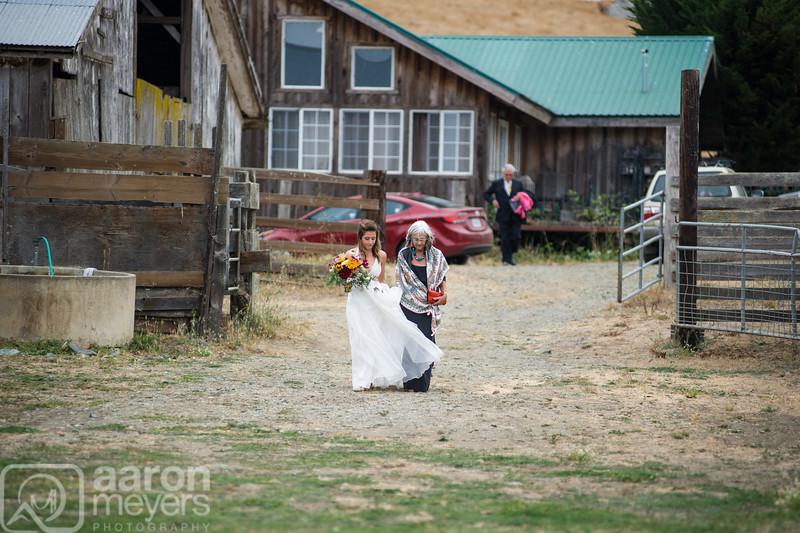 Shelley & JD Carluccio Wedding July 25, 2015 Cow Track Ranch, Sonoma, CA Aaron Meyers Photography
