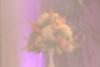 Wedgewood Sierra La Verne Bridal Show - 0023