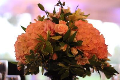 Wedgewood Upland Hills Bridal Show - 0008