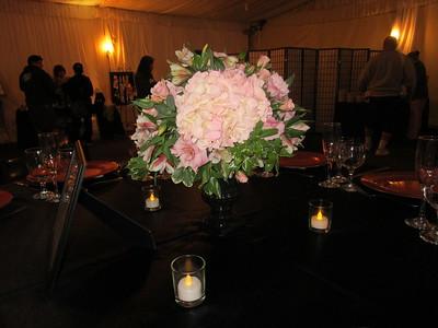 Wedgewood Upland Hills Bridal Show - 0027