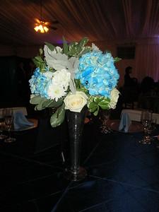 Wedgewood Upland Hills Bridal Show - 0028