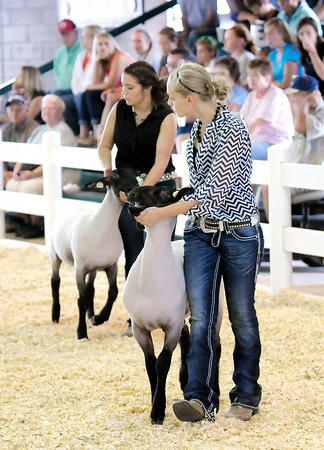 Don Knight | The Herald Bulletin<br /> Savannah Martin leads a sheep around the show ring during the Supreme Showmanship competition at the 4-H Fair on Wednesday.