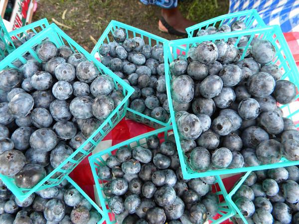 20th Annual Wellborn Blueberry Festival, June 7-8, 2013