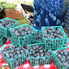 20th Annual Wellborn Blueberry Festival, June 7-8, 2013