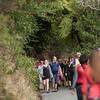 2013_Wellington_FYD_Walk_130414_3407