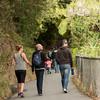 2013_Wellington_FYD_Walk_130414_3207