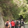 2013_Wellington_FYD_Walk_130414_3017