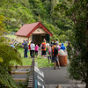 2013_Wellington_FYD_Walk_130414_2289