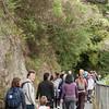 2013_Wellington_FYD_Walk_130414_3104