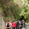 2013_Wellington_FYD_Walk_130414_3019