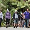 2013_Wellington_FYD_Walk_130414_3086