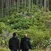FYD 2012_ZEALANDIA_1741_120401