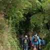 FYD 2012_ZEALANDIA_310_120331