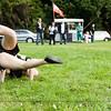 FYD 2012_ZEALANDIA_4467_120401
