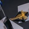 Plain_English_Award_alanragaphotographer_wellingtonphotographer_141127_7890