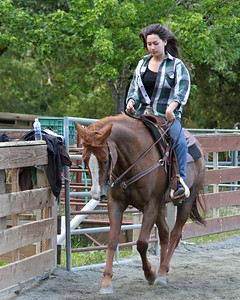 Western Riding Clinic 2010