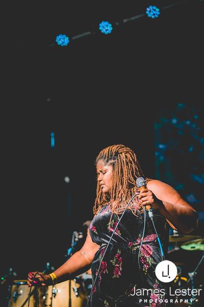 Whale Rock Music & Arts Festival '17 ~ James_012