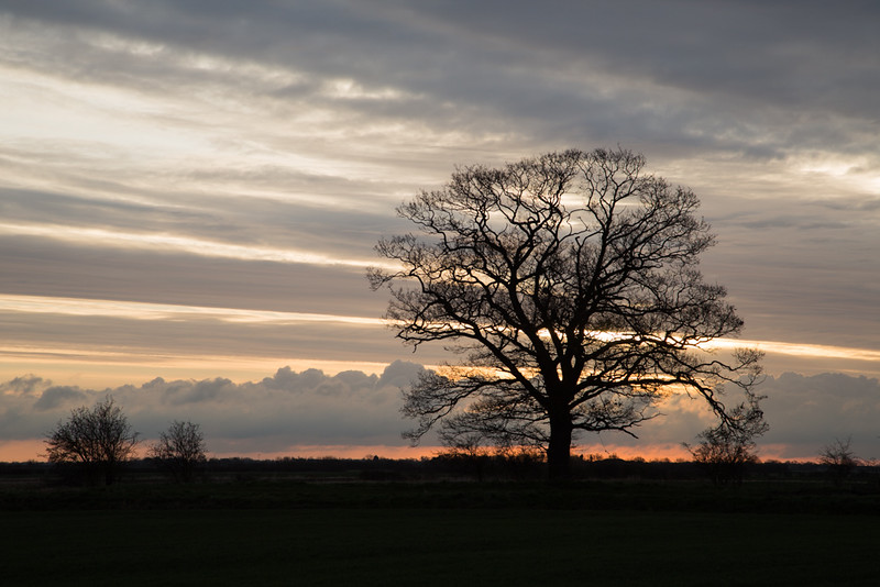 2 April 2015 - Sunrise over Haven Oak