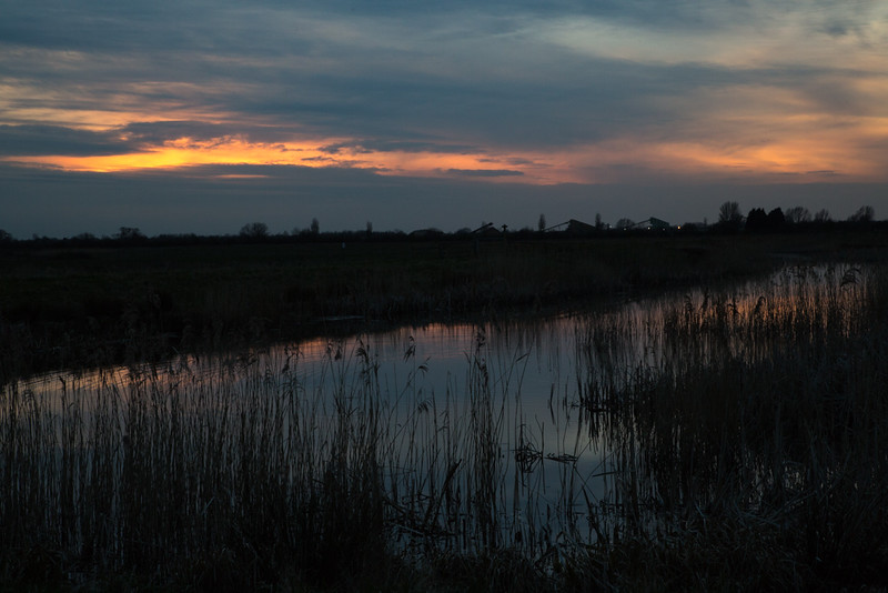 2 April 2015 - Sunset over Hansen RSPB reserve