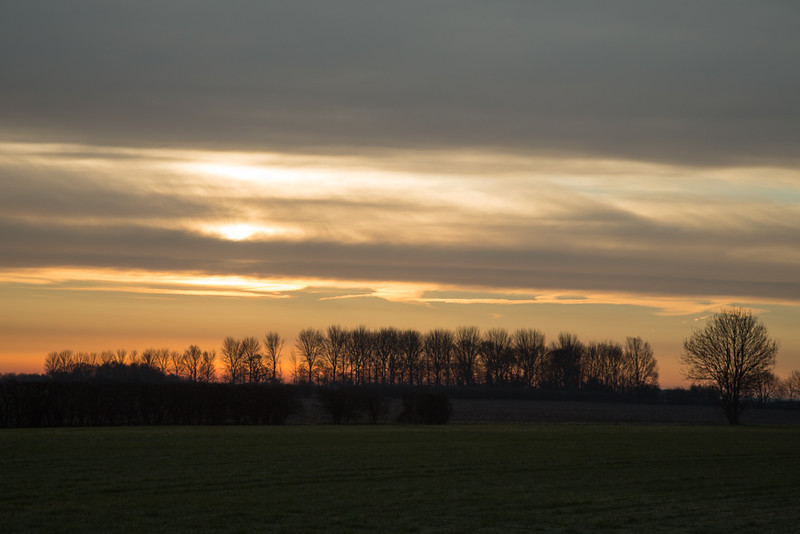 March sunrise in the fens