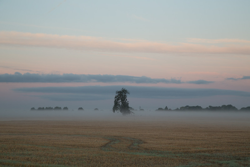 18 October 2016: Dawn clouds in the west herald the approaching sunrise on a misty autumn morning next to the River Great Ouse near Willingham