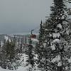 Whistler Jan09 004