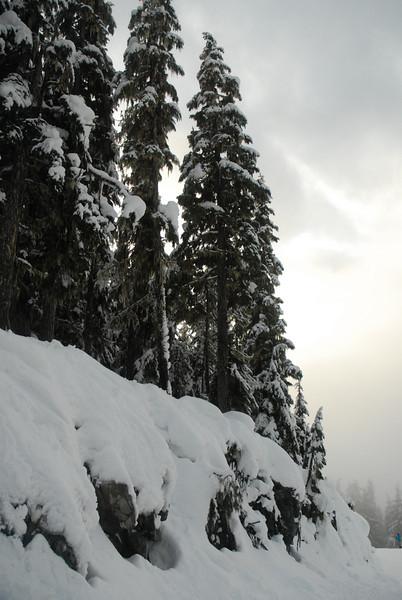 Whistler Jan09 076