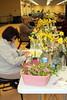 7_daffodil_041040