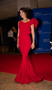 Lisa Edelstein, White House Correspondents Dinner